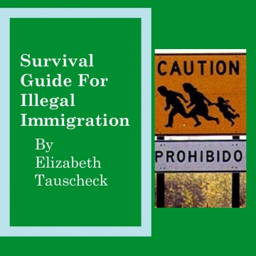 Immigration survival guide