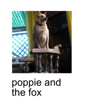 poppie and the fox (toy)