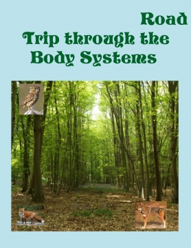 Road trip through the body systems
