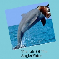 The Life Of AnglerPhin