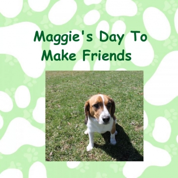 Maggie's Day To Make Friends