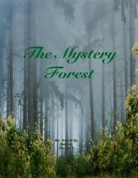 The Mystery Forest