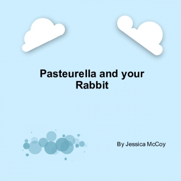 Pasteurella and your Rabbit