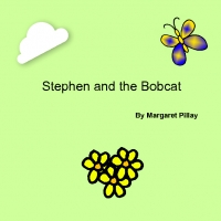 Stephen And The Bobcat