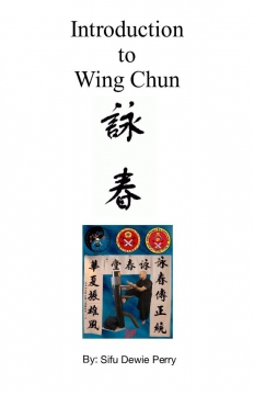 Introduction To Wing Chun
