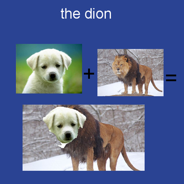 the dion