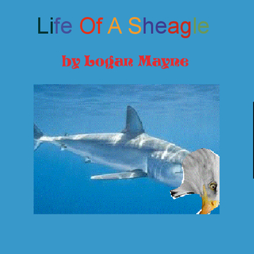 The Life Of A Sheagle