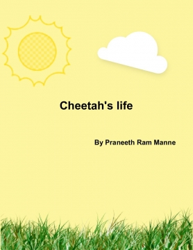 The Cheetah's life