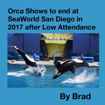 Orca Shows to end at SeaWorld San Diego in 2017 after Low Attendance