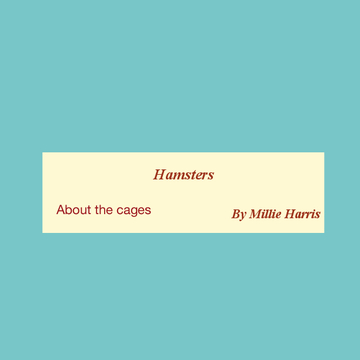 Hamsters : about the cages
