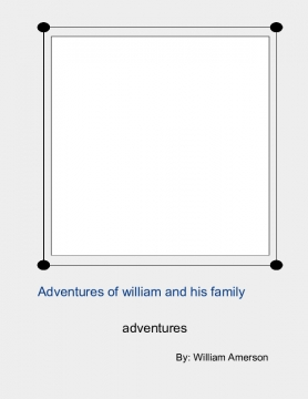 Advenutures of william, his family