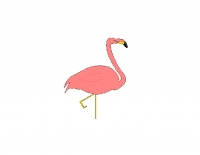 Piny The Flamingo