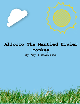 Alfonzo The Mantled Howler Monkey