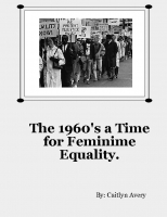 The 1960's a Time for Feminime Change.