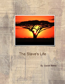 The Slave's LIfe....