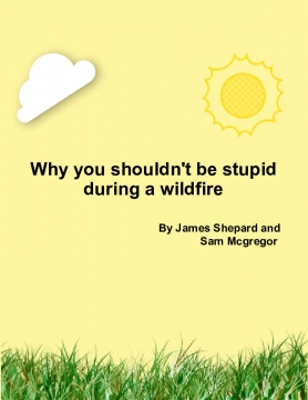 Why You Shouldn't Do Stupid Stuff In A Wildfire