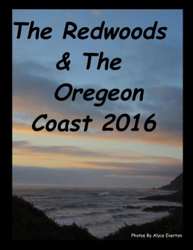 The Redwoods & Oregon Coast 2016