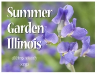 Summer Garden Illinois