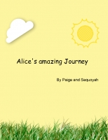 Alice's amazing journey