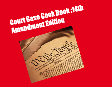 Court Case Cookbook : 14 Amendment Edition