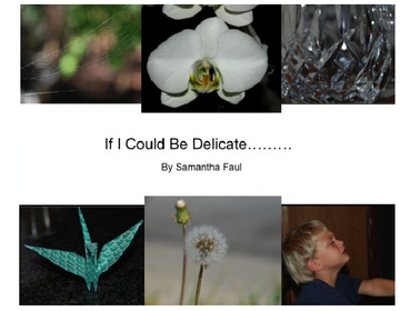 If I Could Be Delicate