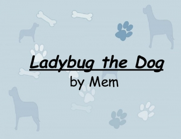 Ladybug The Dog