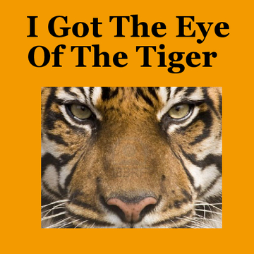 I Got The Eye Of The Tiger