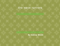 the wave runners