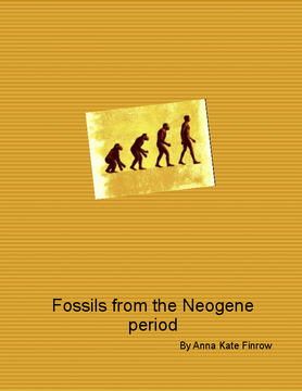 Fossils in the Neogene period