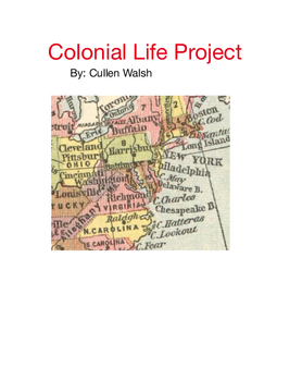 Colonial Life Project