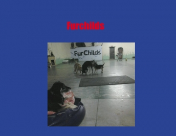 Furchilds