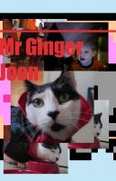 Mr. Ginger Joon