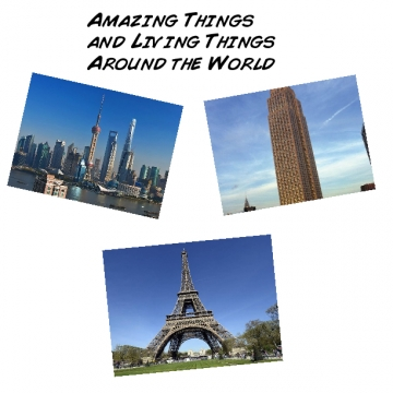 Amazing Things Around the World