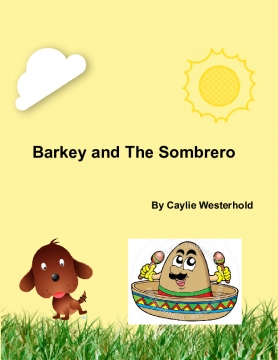 Barkey and The Sombrero
