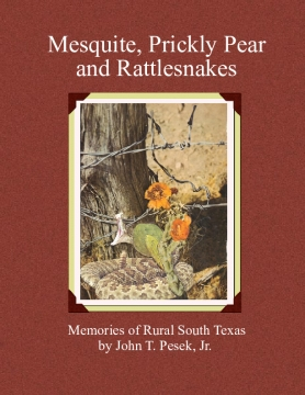 Mesquite, Prickly Pear, & Rattlesnakes