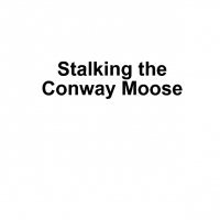 Stalking the Conway Moose