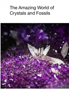 The Amazing World Of Crystals And Fossils