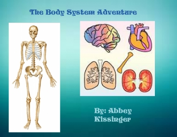 The Body System Adventure