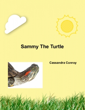 Sammy the turtle