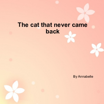 The cat that never came back