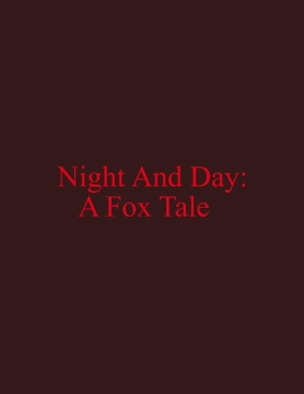 Night And Day: A Fox Tale