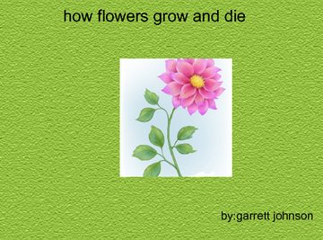 how flowers grow and die