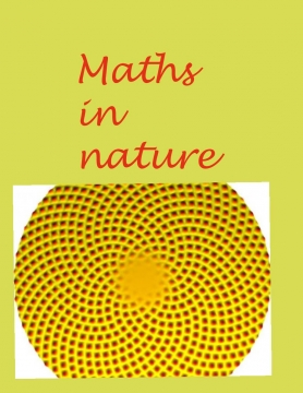 Maths in nature
