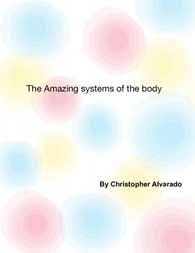 The Amazing Systems of The Body