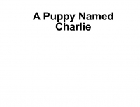 A Puppy Named Charlie