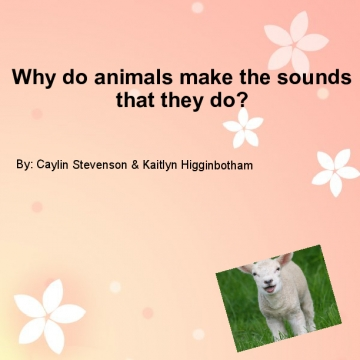 Why do animals make the sounds that they do?