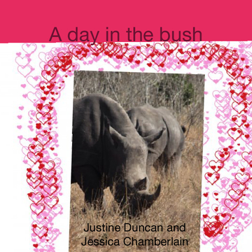A day in the bush