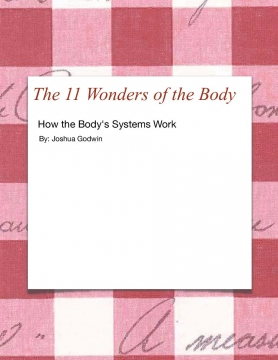 The 11 Wonders of the Body