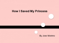 Saving My Princess