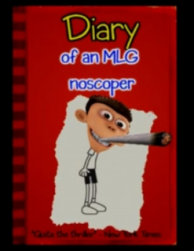 Diary Of A MLG Noscoper